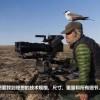 佳能光学团队面对的最大考验!来自野生动物摄影师的挑战