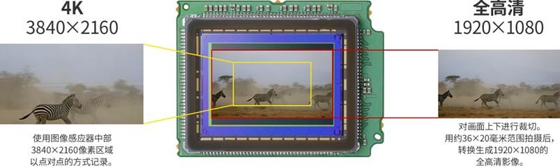 升级到全画幅传感器的利弊好坏-单反之缘起